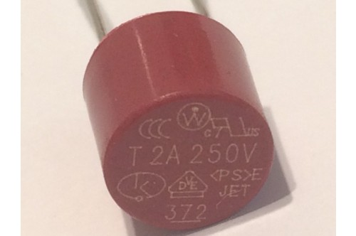2A TIME DELAY RADIAL MINIATURE WIRE ENDED FUSE TR5 (x2) fbe4c9